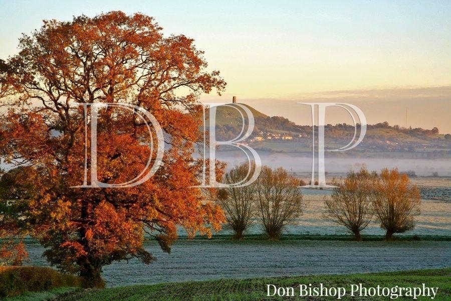 (NT) Glastonbury Tor on an Autumn morning