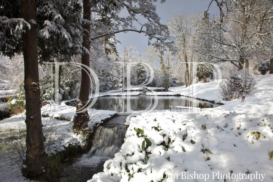 Cedar Falls, Bishops Lydeard, Somerset after snow.
