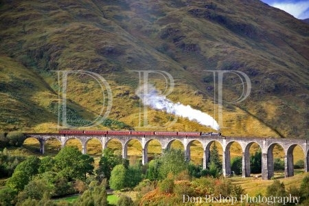 Scottish Highland steam